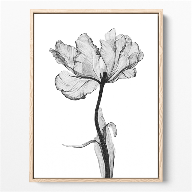 flower blooming black and white canvas print